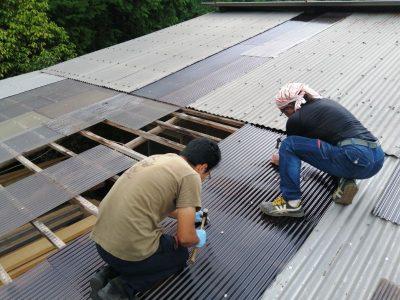 ポリカ波板屋根の耐久年数は、15~20年。